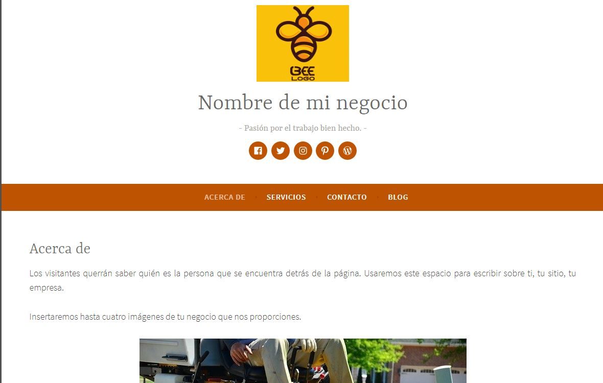 Pack Web prediseñado Dara Desarrollo web Lugo Internet